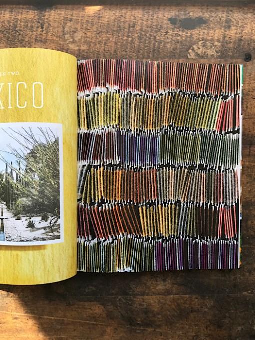 Inside look into Journeys in Natural Dyeing - Kristine Vejar & Adrienne Rodriguez