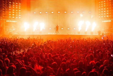 Drake by Justine Hong