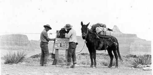 1937 repair to phone line via mule back.