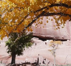 Navajo tour, spirit journey, Canyon de Chelly, sandpainting, fire blessing, rock art