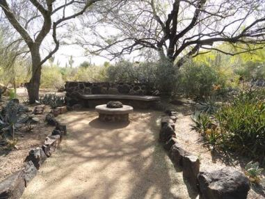 Sedona tour, desert in winter, nature connection