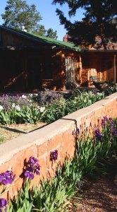 Spring Photos from Sedona, Arizona