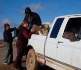 off loading to a 4-wheel drive for muddy delivery (photos by Jackie Kleiger)