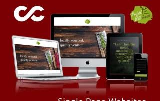 Web design in Kings Lynn