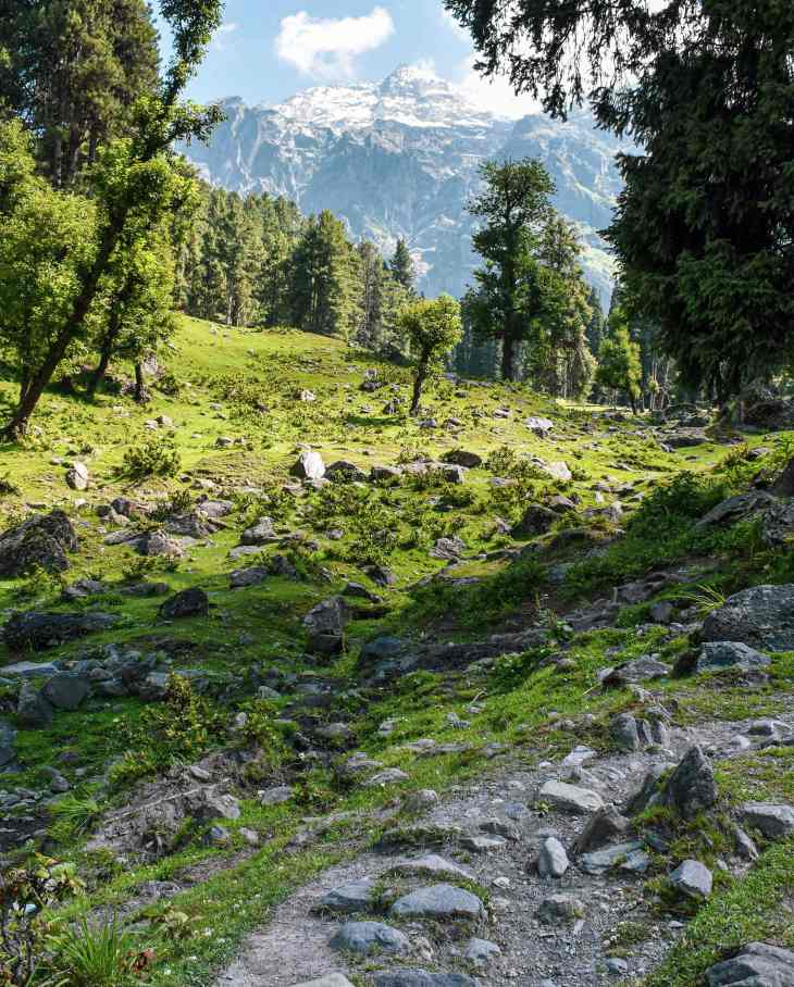 Trekking in Kashmir - Katarnag Lake Trek