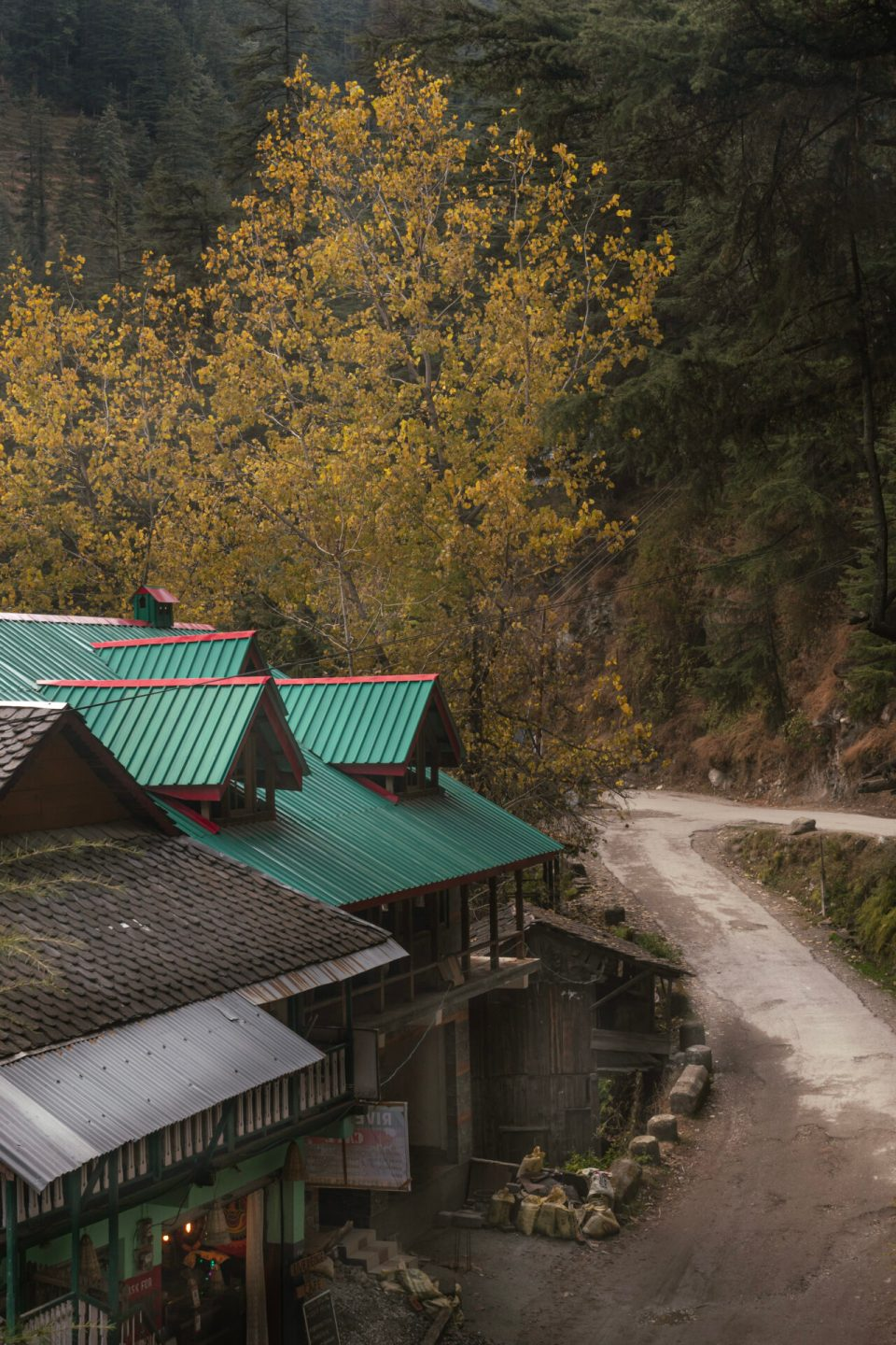 House and Colorful tree in Jibhi Valley