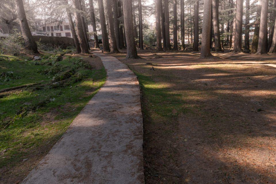 Sceneic Van - Vihar Walk