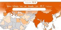 Startup siciliana raccoglie 230k su Indiegogo