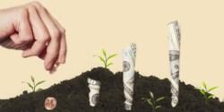 SyndicateRoom ricerca aumento valore startup finanziate nel 2011