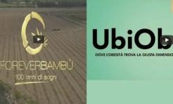 UbiObe e Forever Bambù equity crowdfunding Opstart e BacktoWork24