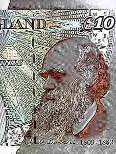 Charles Darwin Money UK