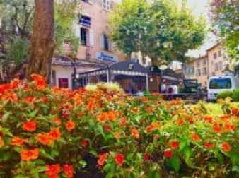 Mougins, France Flowers and Cafe