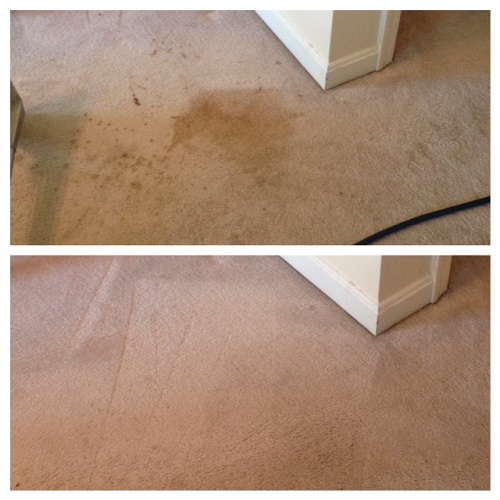 Carpet Stain Before and After