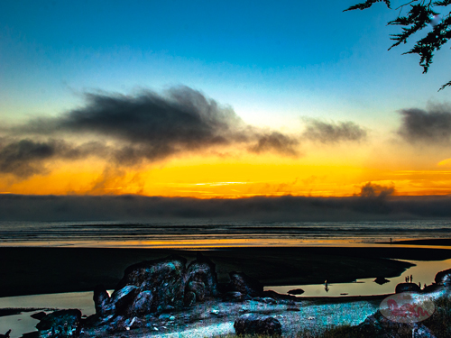 Moonstone Beach 39