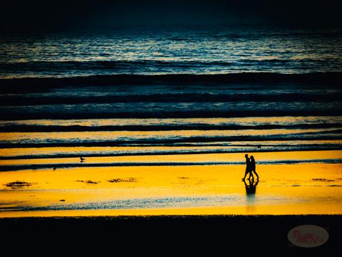 Moonstone Beach 41