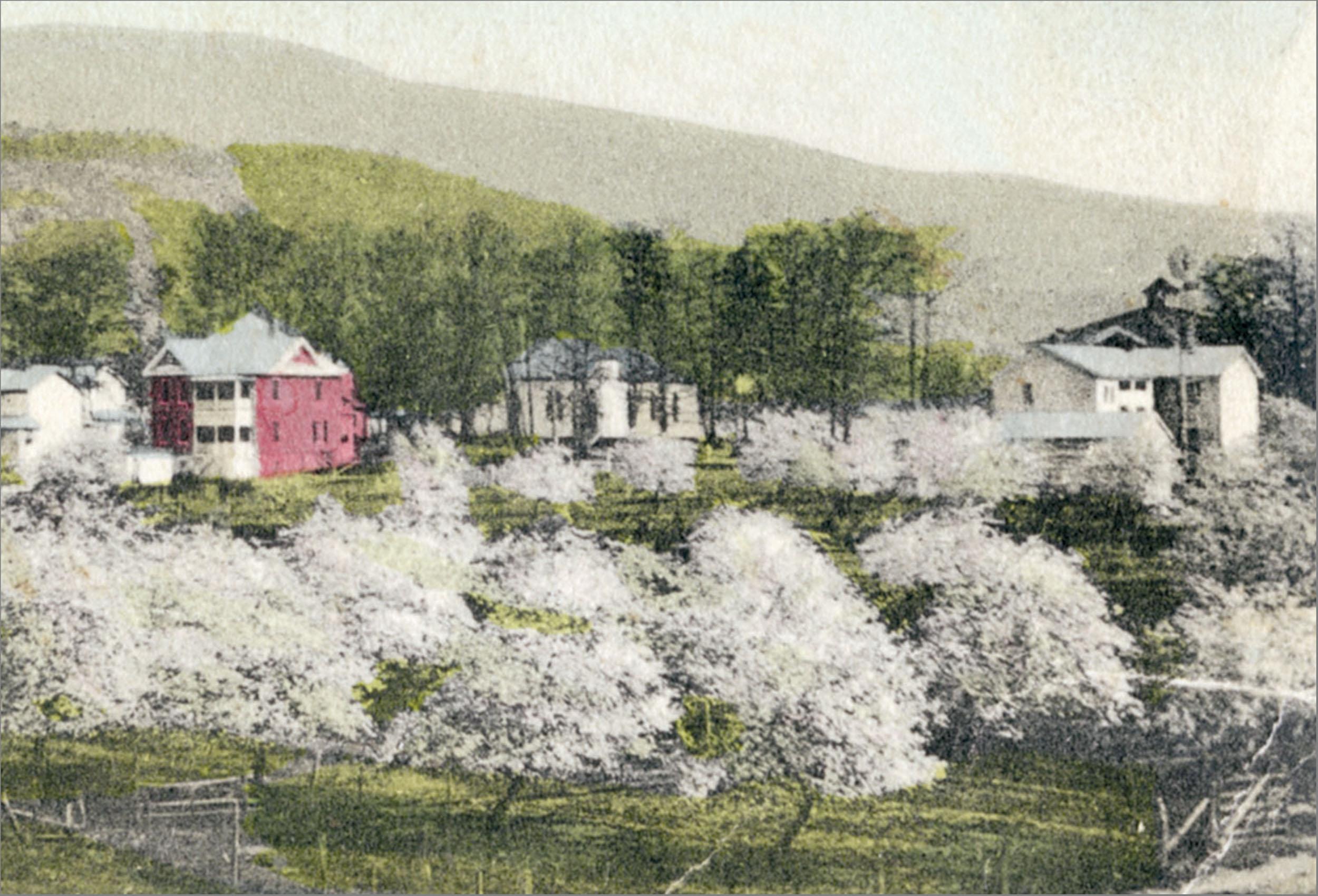Secrets Of The Blue Ridge H Lamont Pugh From The Ragged