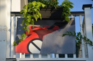A flag from the anti-cruise group in Charleston.