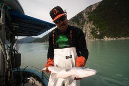 Alaska - Local fisherman catching fresh salmon for UnCruise
