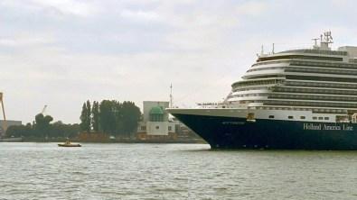 Rotterdam _Cruisereiziger03