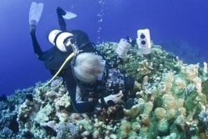 Shooting a tiny sea slug