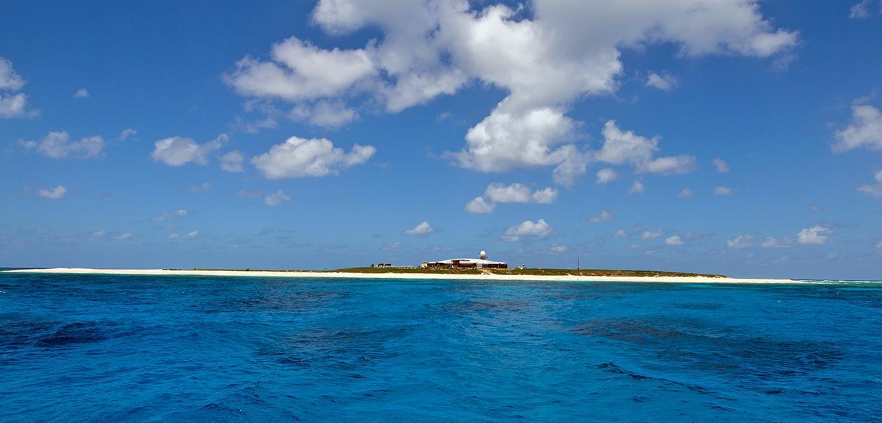 willis islets_0431