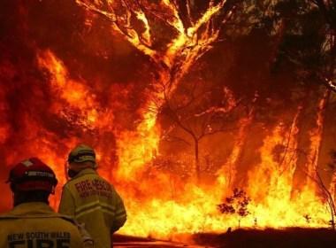 feux de brousse généralisés en Australie