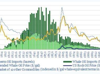 """Les prix du pétrole brut suivront le chemin du """" pétrole de baleine """" alors que la demande a culminé, selon Cathie Wood d'ARK"""