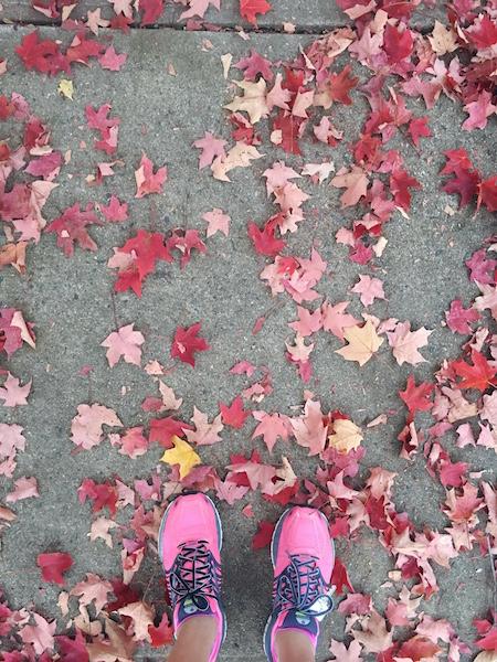 crunchy-kat-fall-leaves