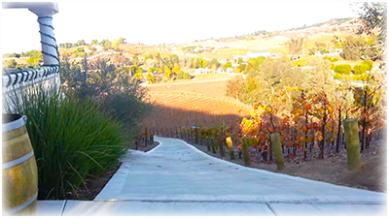 Oak Mountain path