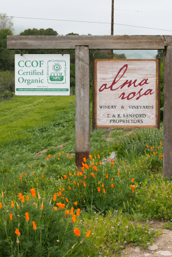 Alma Rosa Vineyard Sign