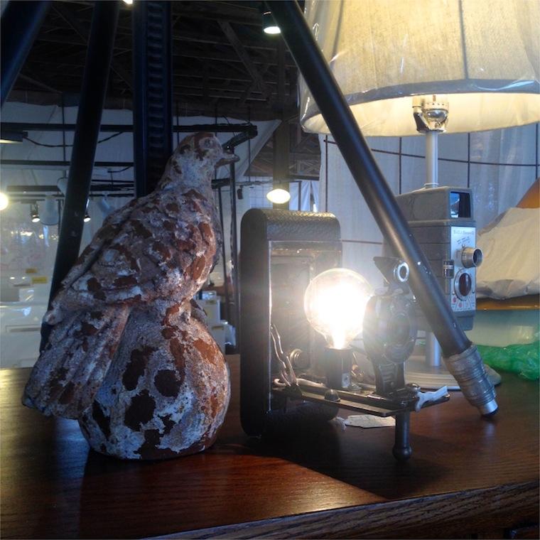 loblolly camera lamp