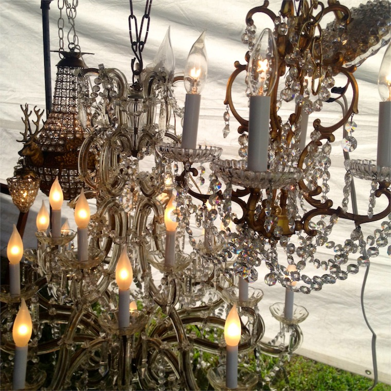 Texas Rose Chandelier