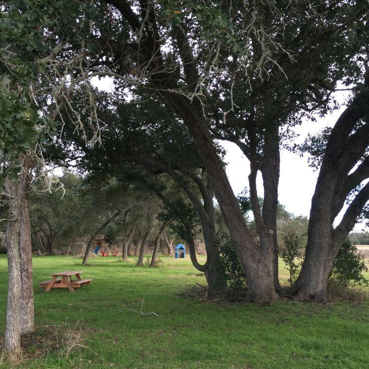 Rohan Playground