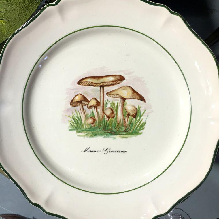 Lone Star Mushroom Plate
