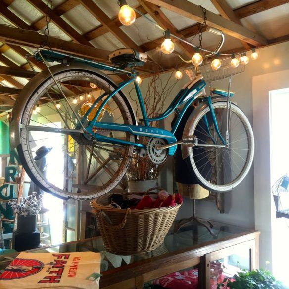 Flown the Coop Bike