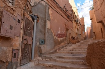 argelia-23