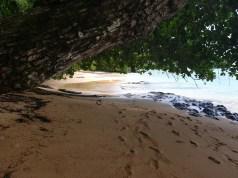 principe-praiasantarita-07
