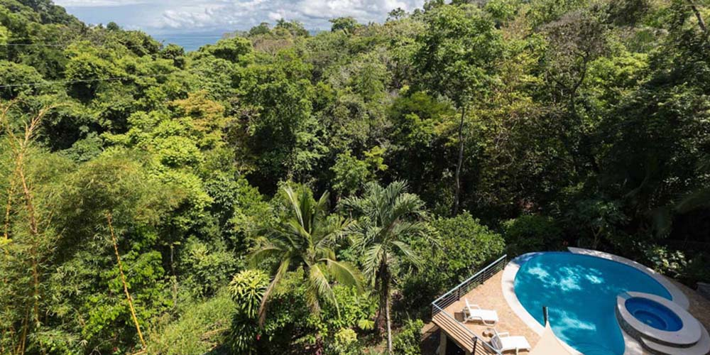 Villa Caimito pool and jungle