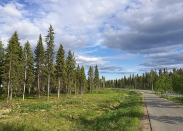 A road running through Rovaniemi.