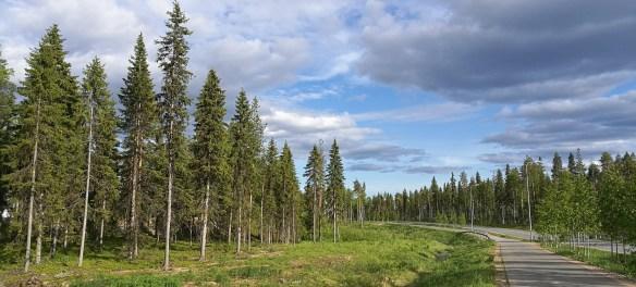 A road running through Rovaniemi.