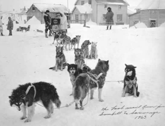 This image has an empty alt attribute; its file name is last-sled-dog-mail-run.jpeg