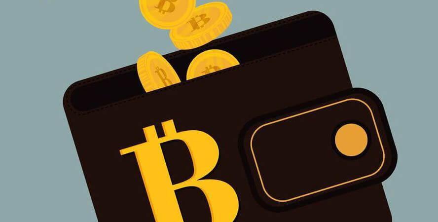 """أهم ما يجب أن تعرفه عن محافظ العملات الرقمية المشفرة """"Crypto Wallets"""""""