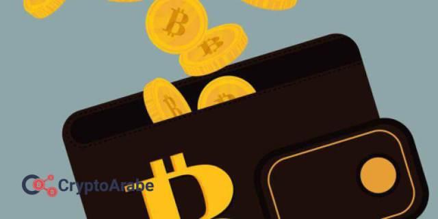افضل محافظ العملات الرقمية المشفرة و كيفية حمايتها