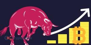سوق الثور يتجه ب سعر بيتكوين نحو 8,000 دولار هذا اليوم