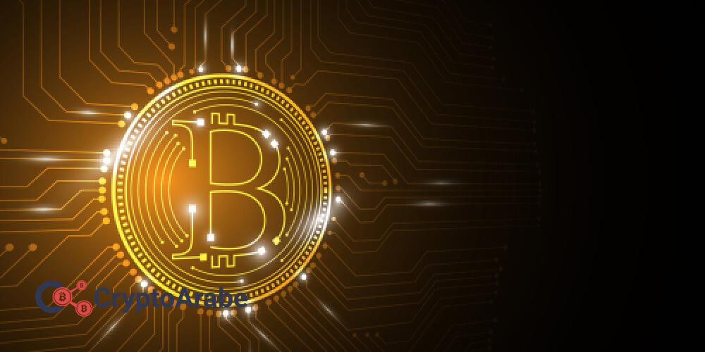 بيتكوين يخلق المفاجأة في سوق العملات المشفرة في سنة 2019