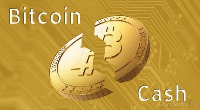 Bitcoin Cash на грани раскола