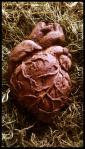 Aztec Sacrificial Heart