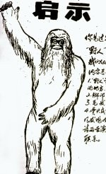 Cryptomundo Yeren Spotted In Shennongjia