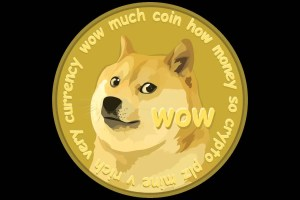 Dogecoin (DOGE) and Basic Attention Token (BAT) Showcase First Recovery Motives