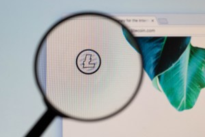 Crypto Enters The Ring: Litecoin (LTC) To Sponsor UFC Match
